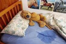 Bedplassen   Ik heb een tip over bedplassen. Als je kind in bed heeft geplast moet je baby/talk poeder op de plek strooien. Even laten inweken en dan als het droog is met de stofzuiger er over. Zo sla je 2 vliegen in een klap; en de plek is droog zonder kringen en het ruikt niet vies...
