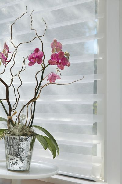 Benefits to choosing a Silhoutte for your home: The Silhouette shadings diffuse the daytime sunlight while creating a soft glow in your home. They also provide privacy, as the white rear sheer obscures the view into your home.http://normandeauwc.com/
