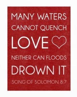 Song Of Solomon Bobbysmith1bandcamp Album Wedding QuotesWedding