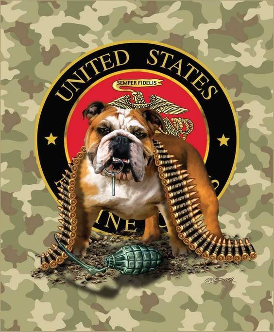 "Royal Plush Extra Heavy Queen Size Mink Blanket - Patriotic Bulldog with TNT Semper Fi (79"" x 85"")"