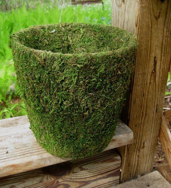 Moss pot