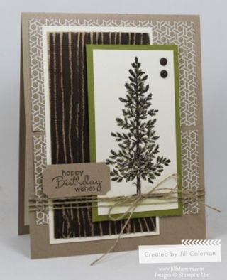 womens platform sandals sale A Masculine birthday card featuring the Lovely As A Tree stamp set   stampinup