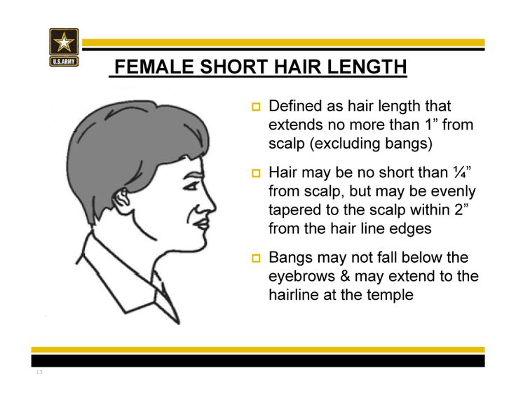 New Army hair regulations - AR 670-1 as of 31 March 2014 #shorthair