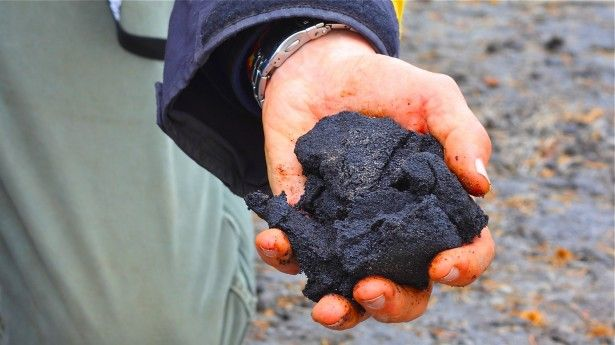 Detroit's mountains of petroleum coke (petcoke) are 'dirtier than the dirtiest fuel'