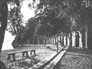 Pyynikin uimaranta 1938