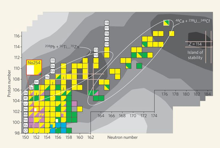 The as-yet undiscovered 'island of stability' is proposed to lie in the upper reaches of the nuclide chart, around proton number (Z) 114 and neutron number 184. This is an otherwise complex nuclear landscape: coloured squares indicate nuclides that have been synthesized in the laboratory through nuclear reactions such as those between targets of lead-208 or uranium-238 and beams of lighter nuclei (left and central ellipses, respectively).