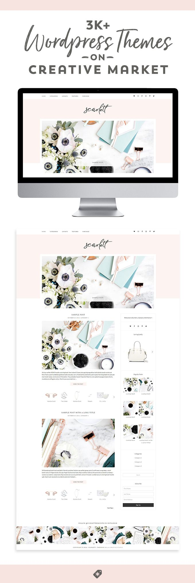Find the perfect Wordpress theme for your blog or e-commerce site!