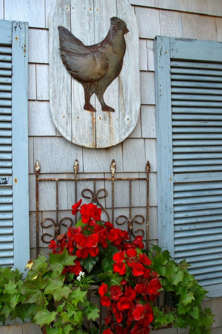 100+ best Roosters images on Pinterest | Roosters, Chicken coops and ...