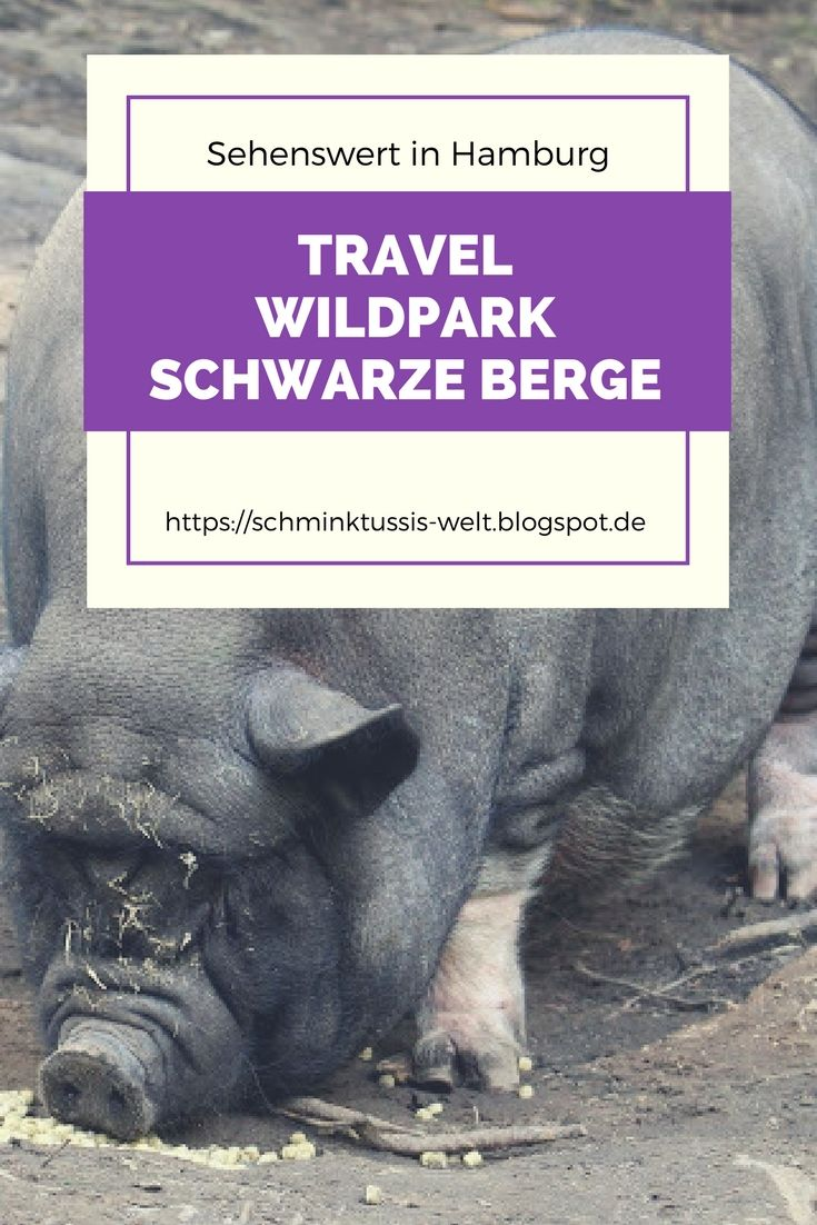 Wildpark Schwarze Berge #schweineliebe #schweine #wildpark #hamburg #hamburgliebe