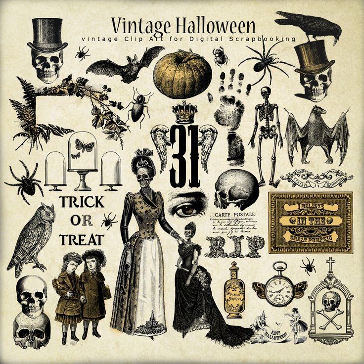Best 25+ Halloween illustration ideas on Pinterest | Cat reference ...