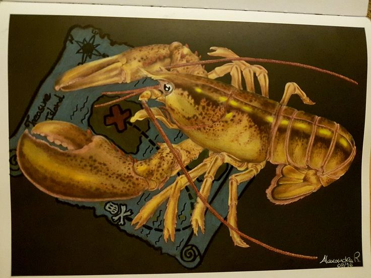 Lobster By Alexandra Rodrigues Pencil ArtColoring BooksAdult