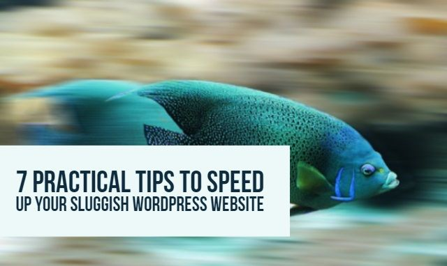 There are multiple ways to make your website load faster. And you don't have to be a tech geek or an SEO expert to do that. Here are 7 practical tips!