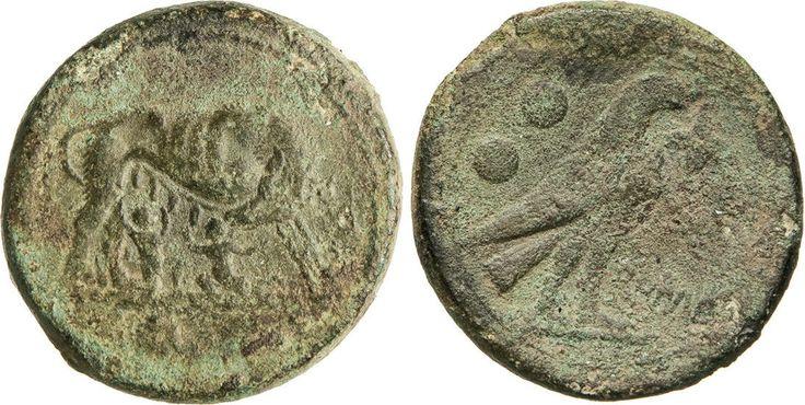 NumisBids: Numismatica Varesi s.a.s. Auction 65, Lot 40 : ANONIME (217-215 a.C.) Sestante. D/ Lupa che allatta i due gemelli...