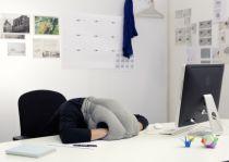 Strutsepute - Ostrich Pillow