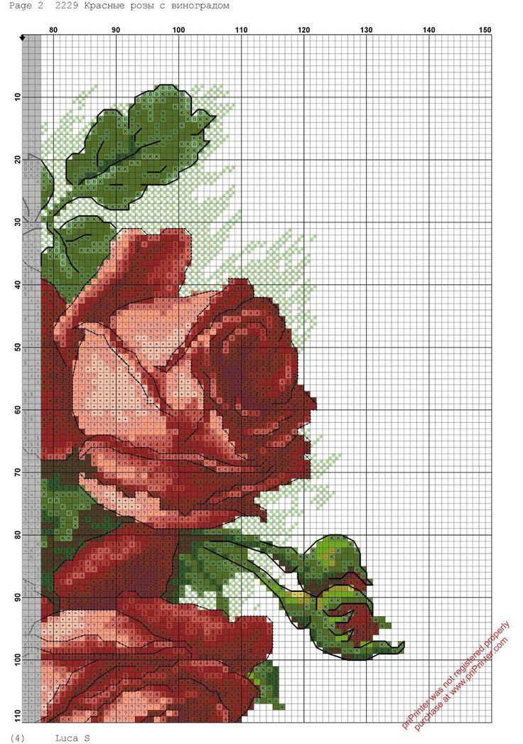 rosas-rojas-3.jpg (1124×1600)