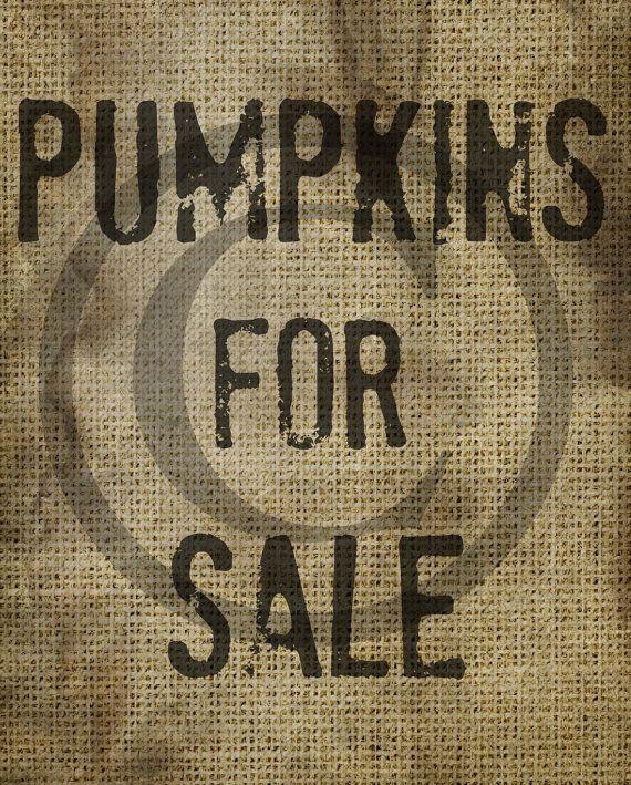 Primitive Pumpkin Pumpkins For Sale Burlap by Starrmtnprims