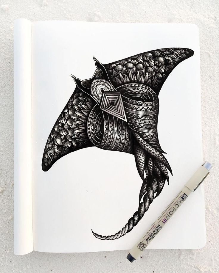 Manta. Animal Drawings and Mandalas. By Faye Halliday.