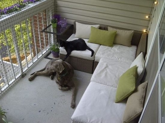 Great idea for apartment porch. I would love to make it screened in so my cats could be outside