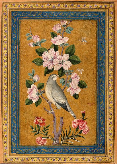 bird perching on a blossoming branch 2 1696 yusf zaman