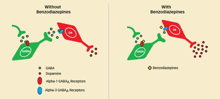 Well-Known Mechanism Underlies Benzodiazepines' Addictive Properties | National Institute on Drug Abuse (NIDA)