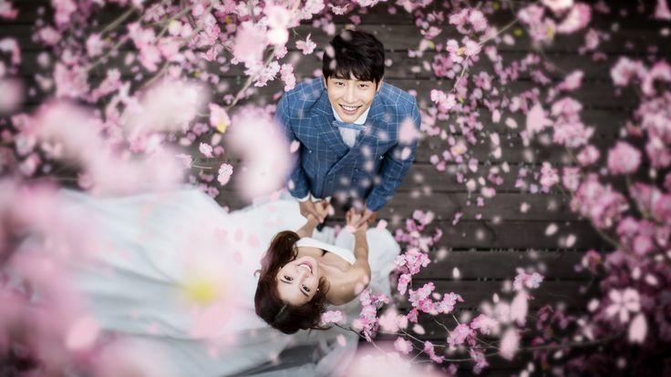 Korea Pre-Wedding Photography in Studio & Dosan Park, Seoul by May Studio on OneThreeOneFour 0