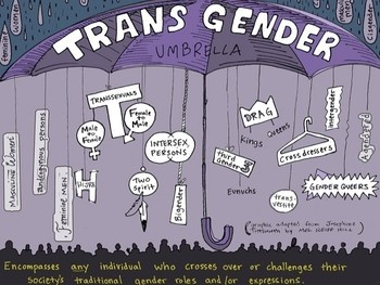 This is a cool umbrella to show all the different labels that can be shoved under transgender.