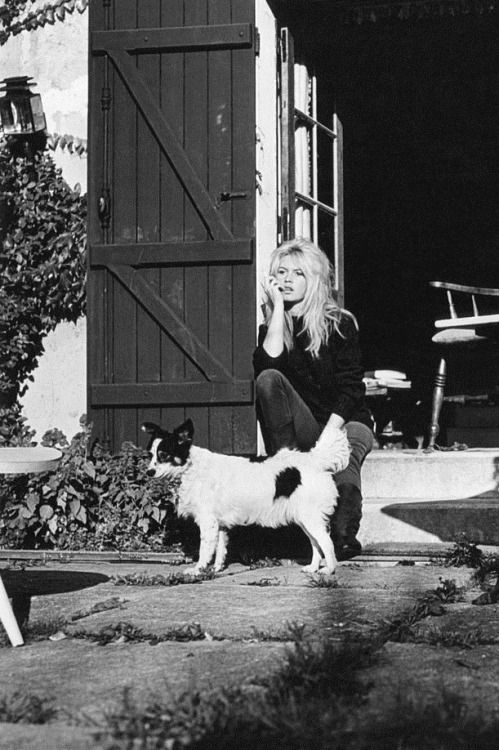Brigitte Bardot at home with her dog Guapa, 1960s