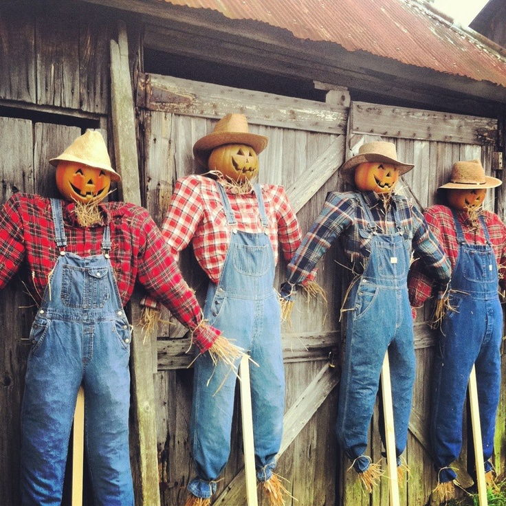 Scarecrows - stuff overalls & shirts; add carved pumpkin heads & straw hats!