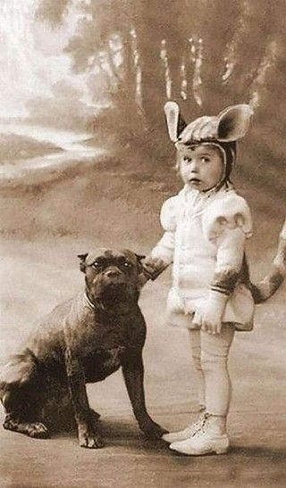 "Old photos of the ""Nanny Dog"" – Staffordshire Bull Terrier"