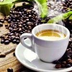 A madárbarát kávé kifejezést azokra a kávécserjékre/kávébabokra alkalmazzák, amelyeket a fák lombkoronája alatt műveltek.