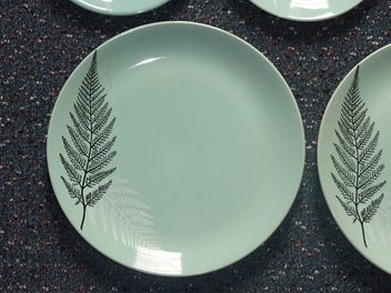I think these are so beautiful - super vitrified ware with black and white ferns