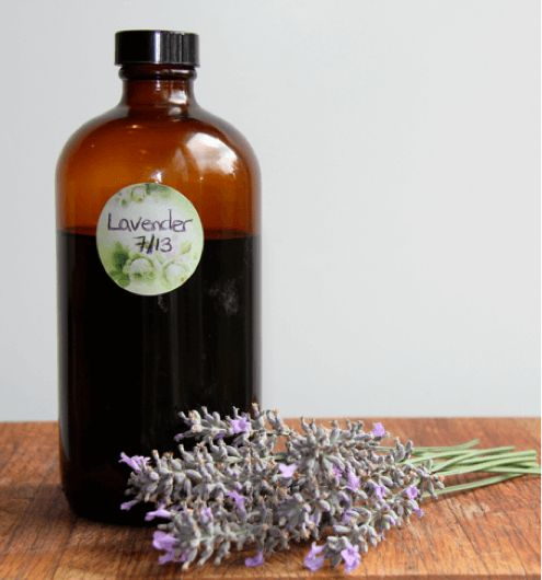 bottle of homemade lavender extract with sprigs of lavender