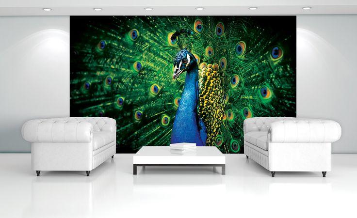 1000 ideen zu federtapete auf pinterest iphone hintergrundbilder bildschirmschoner und tapeten. Black Bedroom Furniture Sets. Home Design Ideas