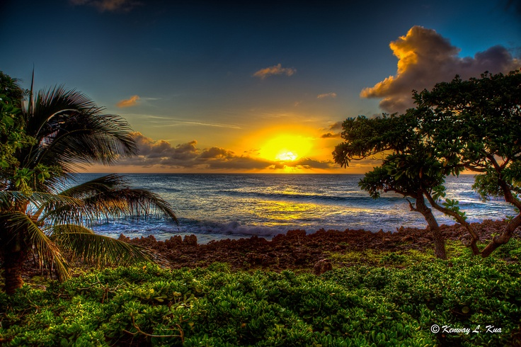 Honeymoon : Should we stay at turtle bay or the kahala resort in hawaii?