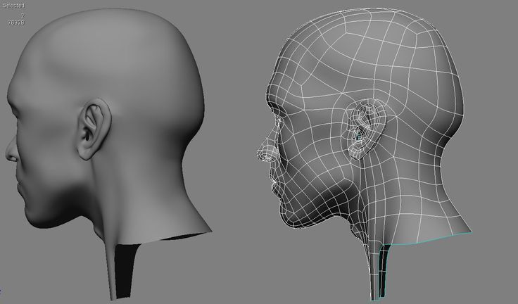 human head topology 3