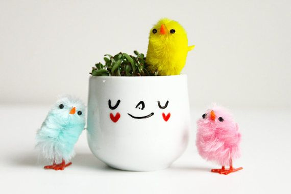 Easter egg cups with chicks and alfalfa sprout seeds! When you purchase from this listing, enjoy 1 little easter chick and a tiny bag of alfalfa sprout seeds so you can grow hair to go with the egg cup face!