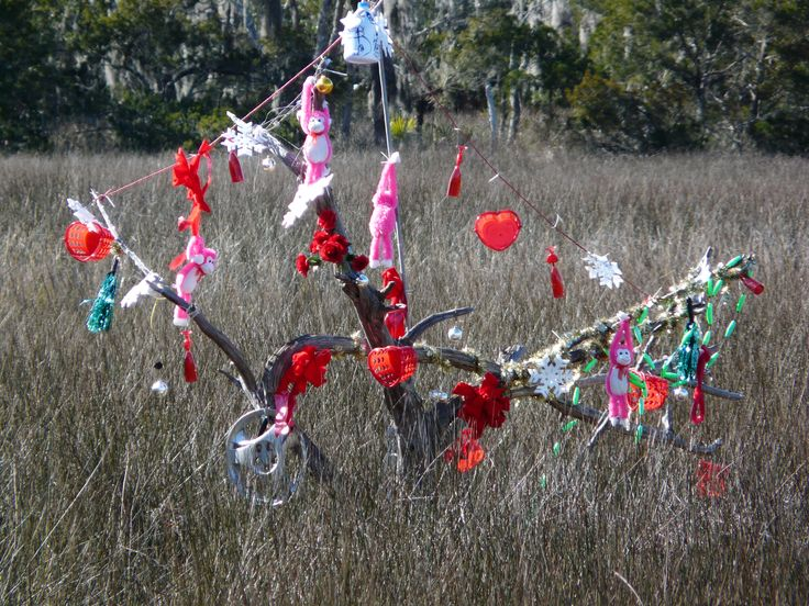 Edisto Island mystery bottle tree.  The mystery is where the bottles are.