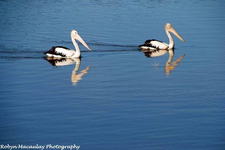 Lake Moodemere, Rutherglen, Vic