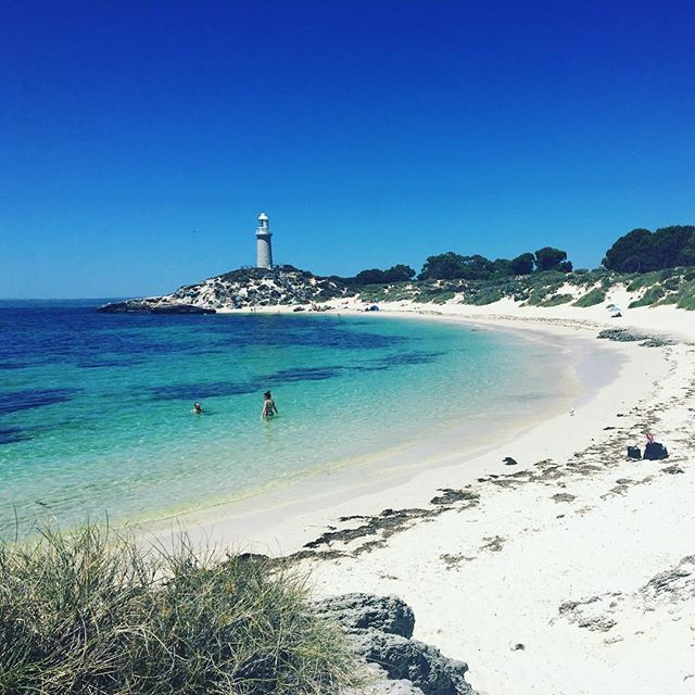Had such an amazing day out in Perth today !! Went across and explored Rottnest Island - such a fun day !