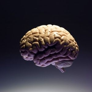 Progressive multifocal leukoencephalopathy (PML) is a life-threatening infection of the brain.