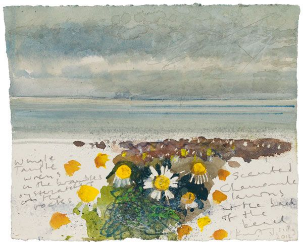 Kurt Jackson: Scented chamomile lawns at the back of the beach. Scilly -  2014 -  mixed media on paper