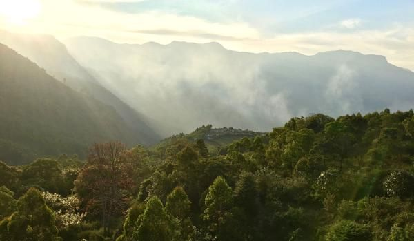 Blick ins Tal von Kanthalloor in Kerala, Indien