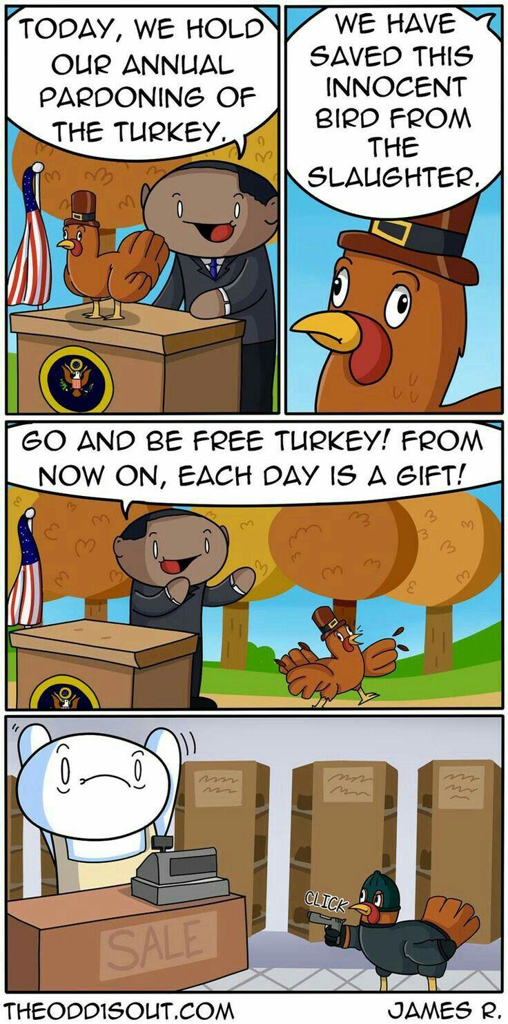 Fully pardoned turkey