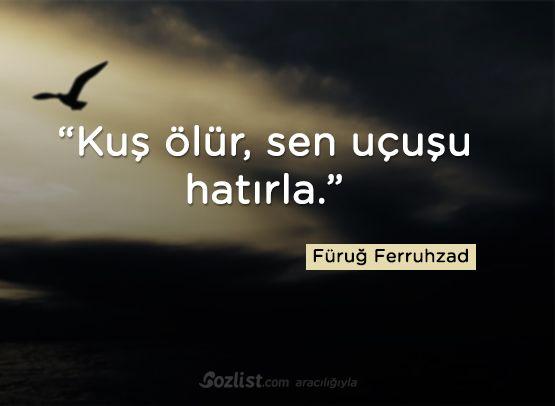 Kuş ölür, sen uçuşu hatırla. #füruğ #ferruhzad #sözleri #anlamlı #şair #kitap #furug #furuğ