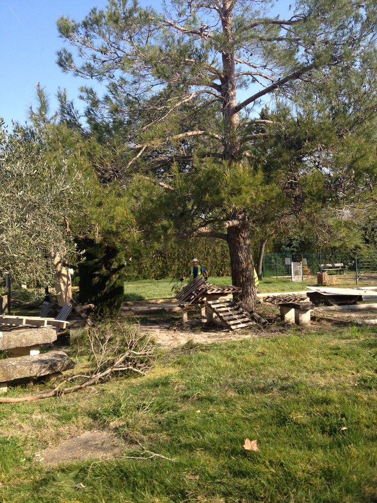 elagage des arbres au terrain de p tanque travaux d 39 hiver winter work camping pegomas. Black Bedroom Furniture Sets. Home Design Ideas