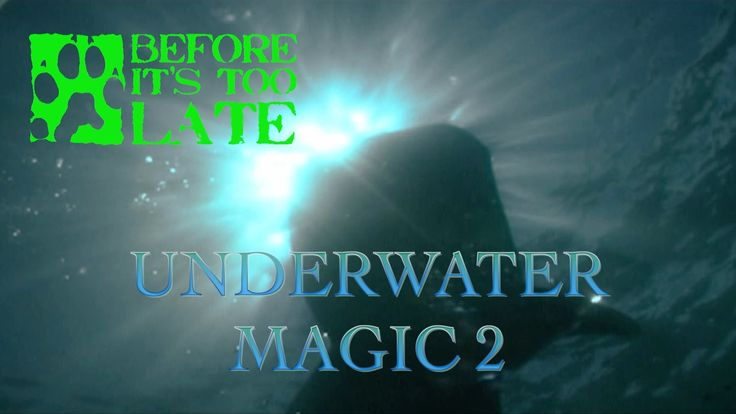 Underwater Magic 2 video. Amazing interaction