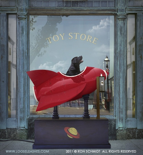 Toy store - ♥ the rocket & the dog!
