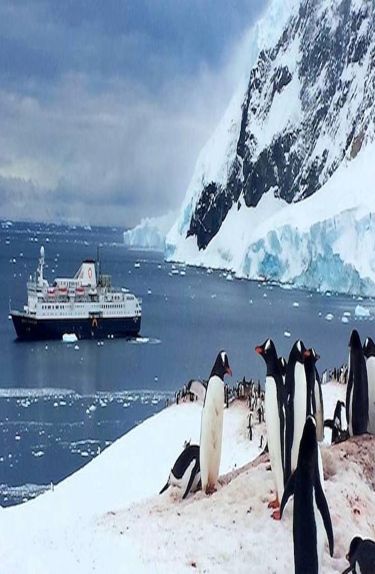 Explore Antartica on a budget