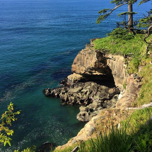 The West Coast Trail was pretty stellar #wct#westcoasttrail#hiking#hike#canada#bc#vancouverisland#ocean#cliff#rocks#trail
