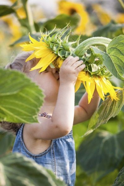 #sunflower #child
